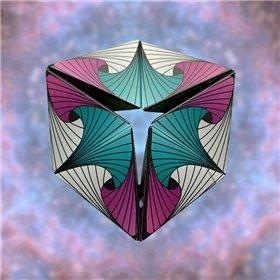 Smart sæt med kuffertorganizers