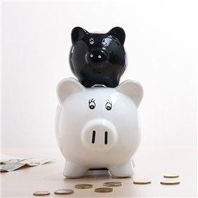 30-8-pin adapter